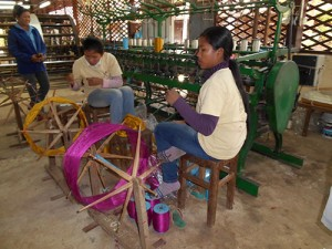 DSCN1870_silkfarmen
