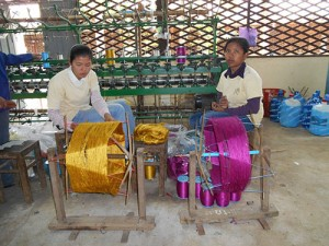 DSCN1871_silkfarmen