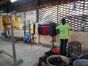 DSCN1887_silkfarmen