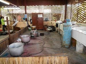 DSCN1890_silkfarmen