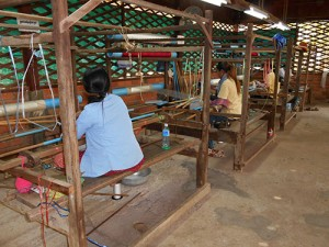 DSCN1895_silkfarmen