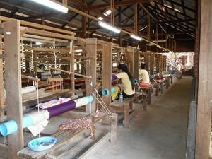 DSCN1902_silkfarmen