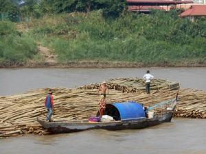 DSCN2386_mekongfloden